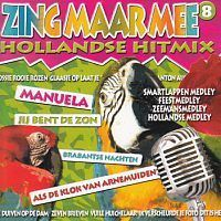 Zing Maar Mee - Volume 8 (Hollandse Hitmix) Karaoke - CD