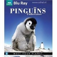 Pinguins Undercover - BBC Earth - Documentaire - Blu Ray