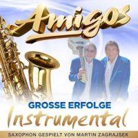 Amigos - Grosse Erfolge Instrumental - CD