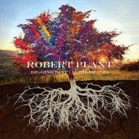 Robert Plant - Digging Deep: Subterranea - 2CD